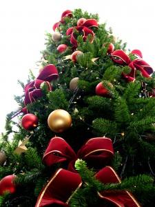 image via wiki commons - Christmas Tree Wiki